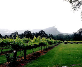 Cambewarra Estate Wines - Tourism Cairns