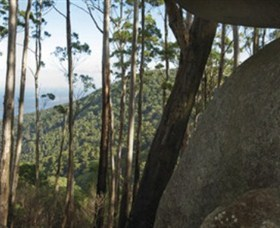 Gulaga National Park - Tourism Cairns