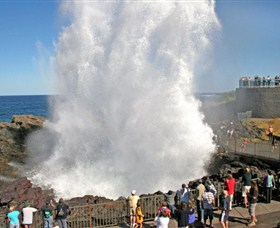 Kiama Blowhole - Tourism Cairns