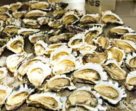 Wheelers Oysters - Tourism Cairns