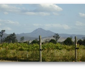 Ironbark Ridge Vineyard - Tourism Cairns