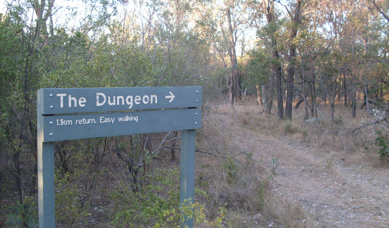 Dungeon lookout - Tourism Cairns
