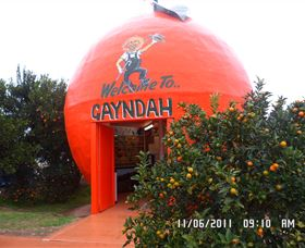 Gayndahs Big Orange - Tourism Cairns