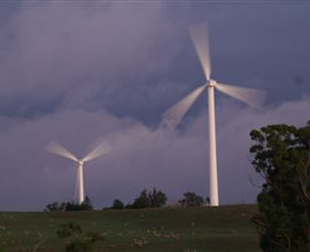 Crookwell Wind Farm - Tourism Cairns