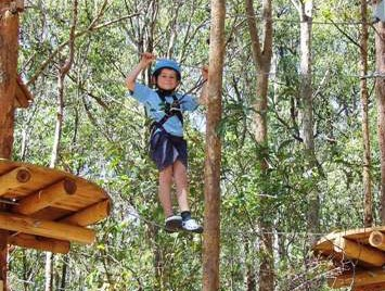 TreeTops Newcastle - Tourism Cairns