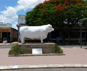 Aramac - The White Bull - Tourism Cairns