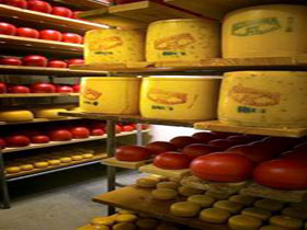 Alexandrina Cheese Company - Tourism Cairns