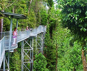 Mamu Tropical Skywalk - Tourism Cairns