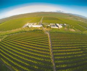 Golden Drop Winery - Tourism Cairns