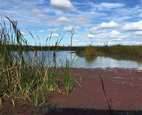 Gwydir Wetlands - Tourism Cairns