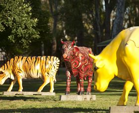 Greater Shepparton's Moooving Art - Tourism Cairns