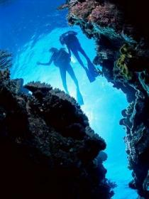 Caves and Canyons Dive Site - Tourism Cairns