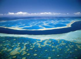 Hardy Reef - Tourism Cairns