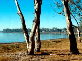 Lake Broadwater Conservation Park - Tourism Cairns