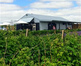Ravens Creek Farm - Tourism Cairns