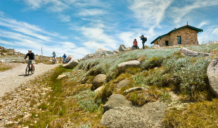 Mount Kosciuszko Summit walk - Tourism Cairns