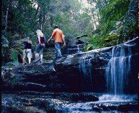 South Lawson Waterfall Circuit - Tourism Cairns