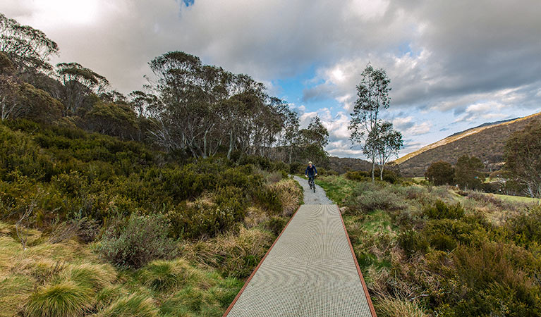 Thredbo Valley track - Tourism Cairns