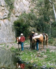 Yarramba Horse Riding - Tourism Cairns
