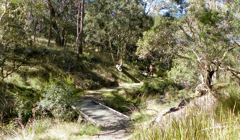 Wollomombi walking track - Tourism Cairns