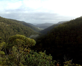Nattai Gorge Lookout - Tourism Cairns
