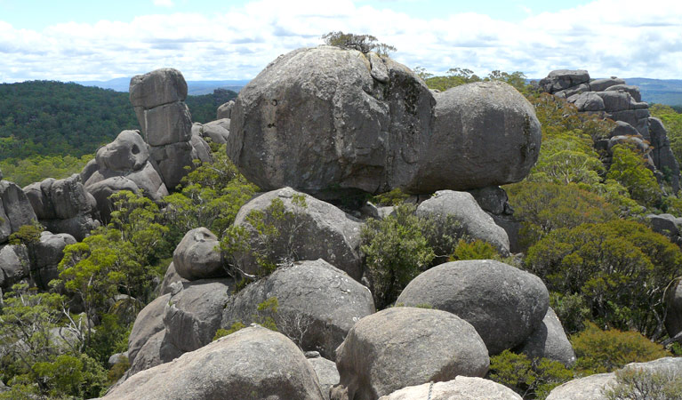 Cathedral Rock National Park - Tourism Cairns