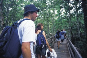 Bellthorpe National Park - Tourism Cairns