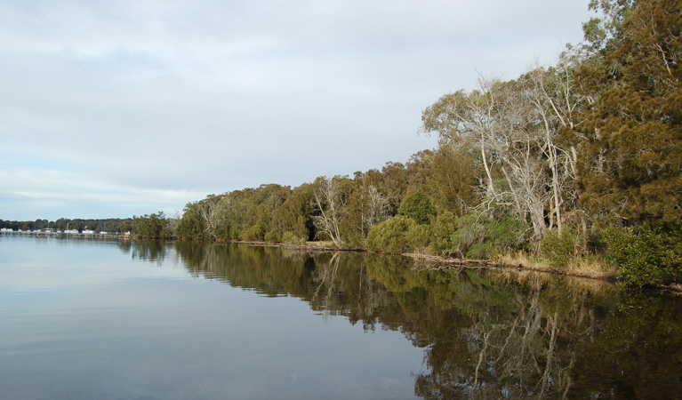 Lake Macquarie State Conservation Area - Tourism Cairns