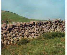 Historic Dry Stone Walls - Tourism Cairns