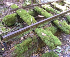 Wootton Historical Railway Walk - Tourism Cairns