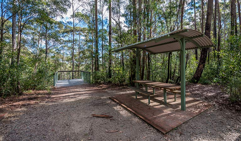 Big Nellie lookout and picnic area - Tourism Cairns