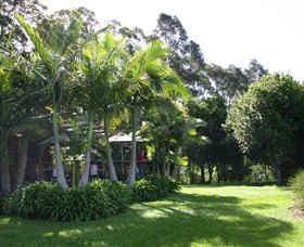 Lorne Valley Macadamia Farm - Tourism Cairns