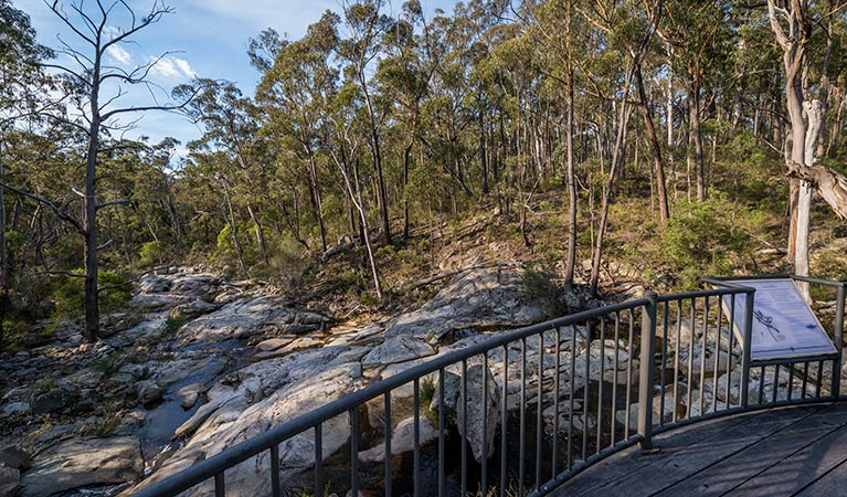 Myanba Gorge walking track - Tourism Cairns