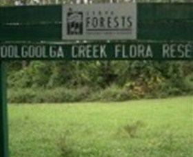 Woolgoolga Creek Flora Reserve - Tourism Cairns