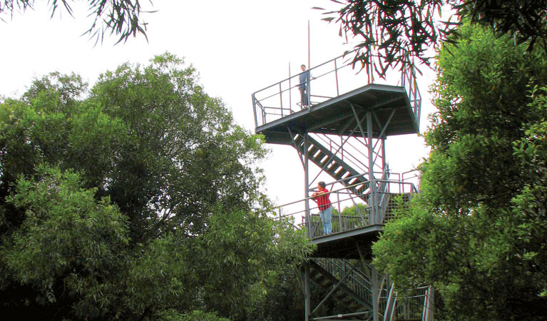 Cape Hawke lookout - Tourism Cairns