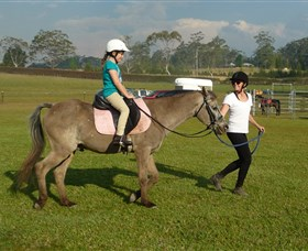 Port Macquarie Horse Riding Centre - Tourism Cairns
