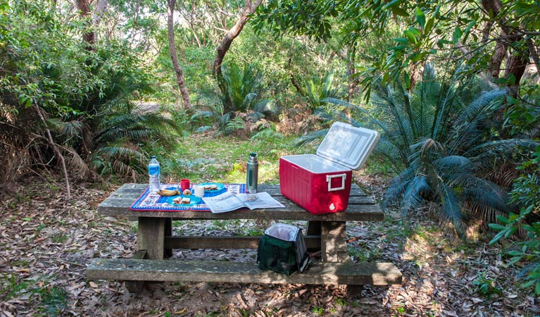 Broadwater Beach picnic area - Tourism Cairns