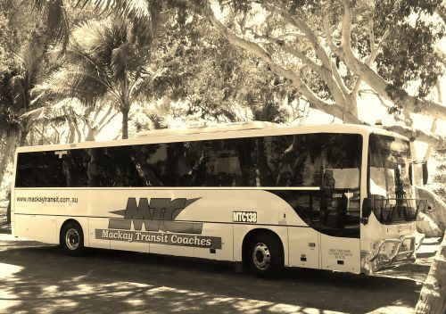 Mackay Transit Coaches - Tourism Cairns