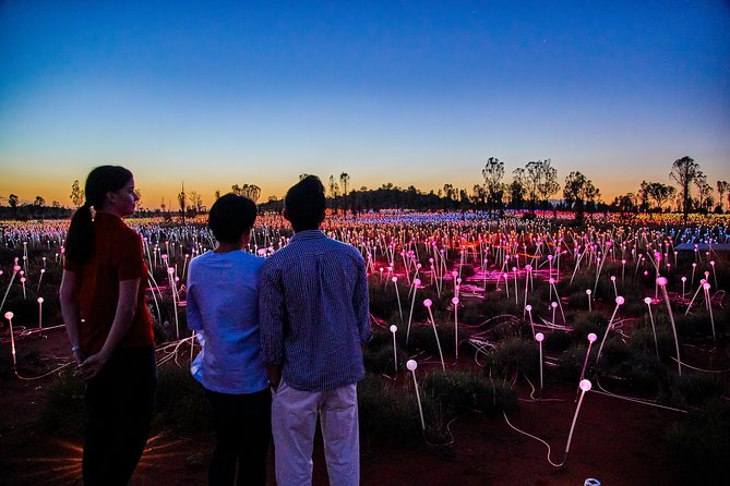 Uluru Field of Light Sunrise Tour - Tourism Cairns