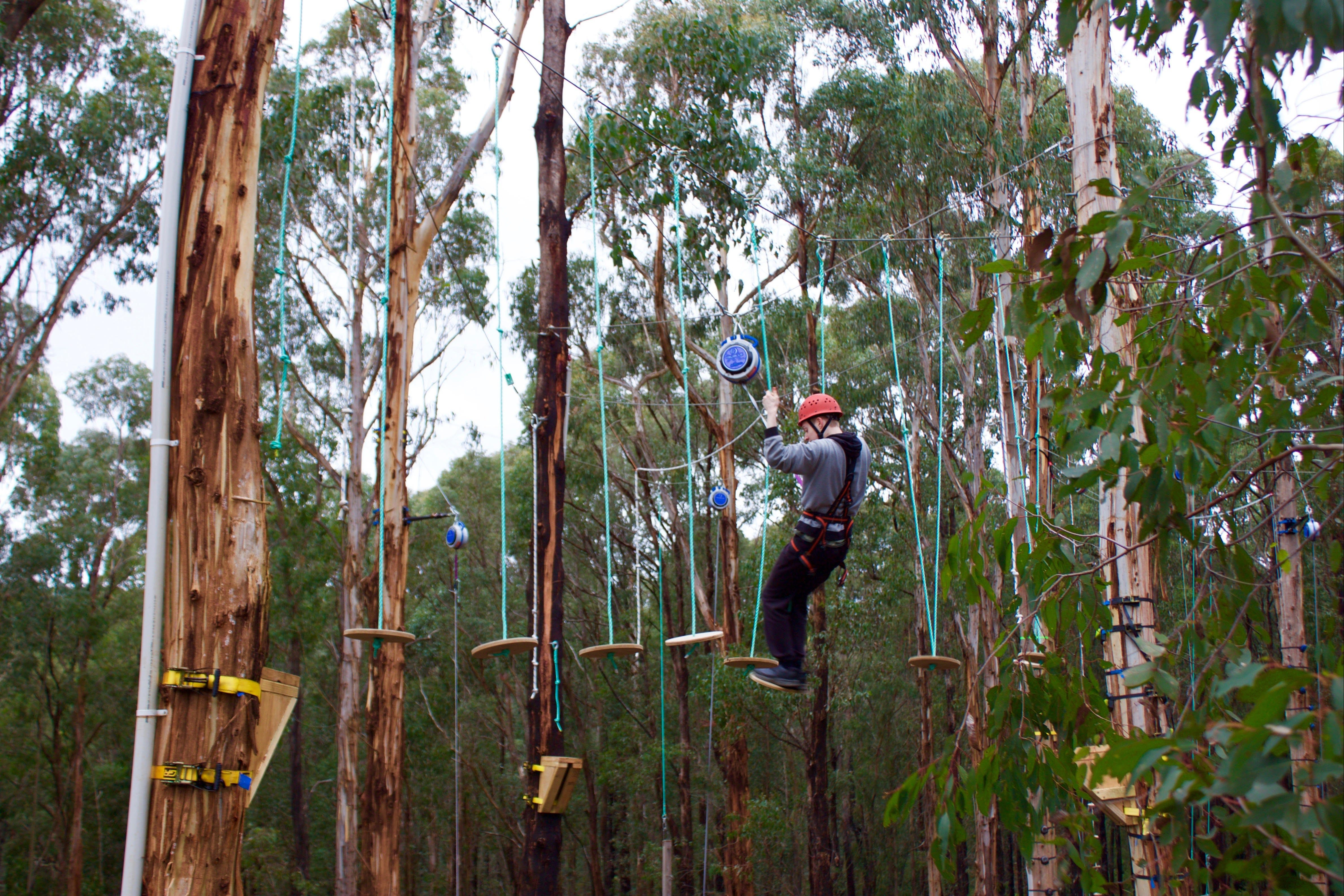 Kinglake Forest Adventures - Tourism Cairns