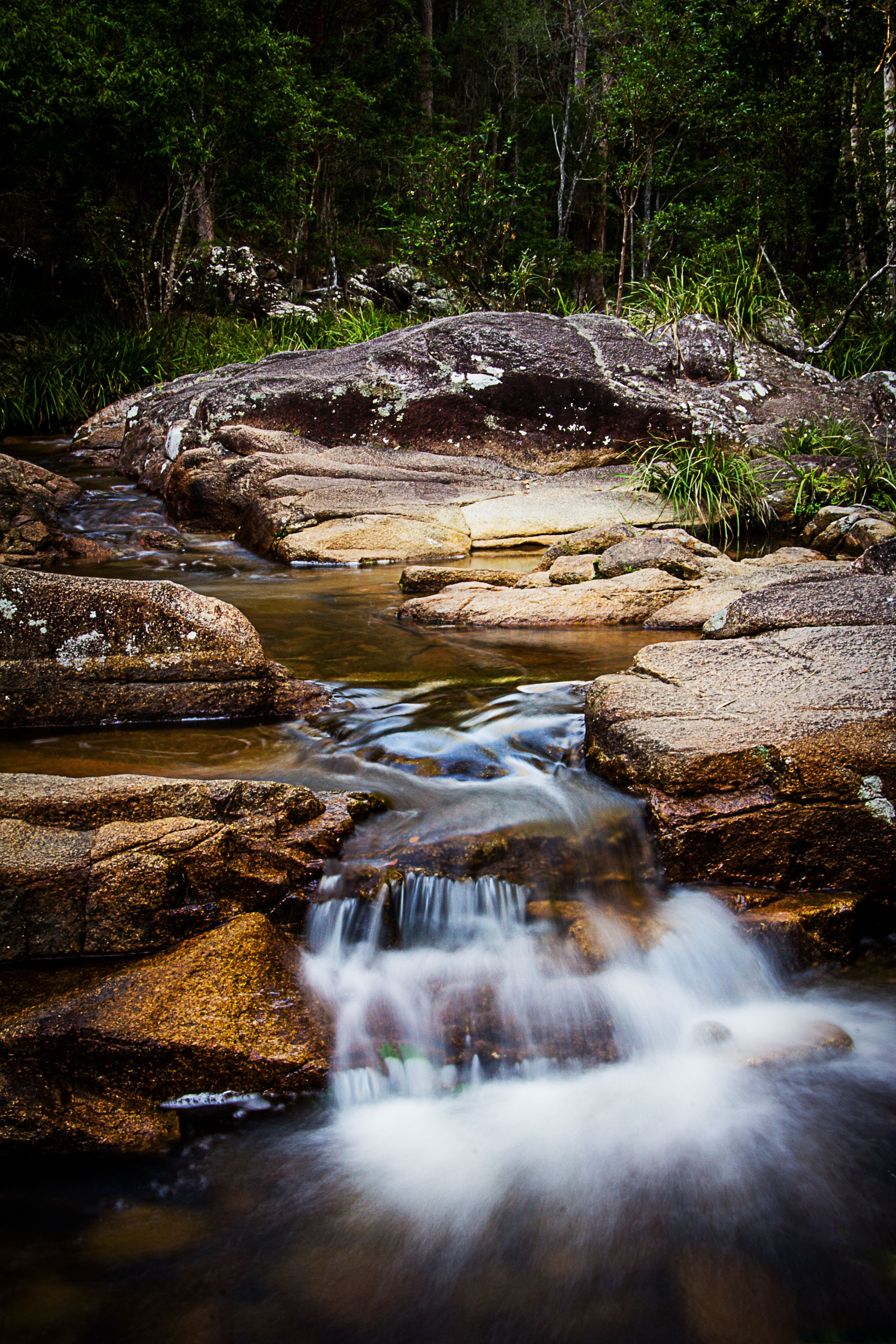 Mothar Mountain Rockpools - Tourism Cairns