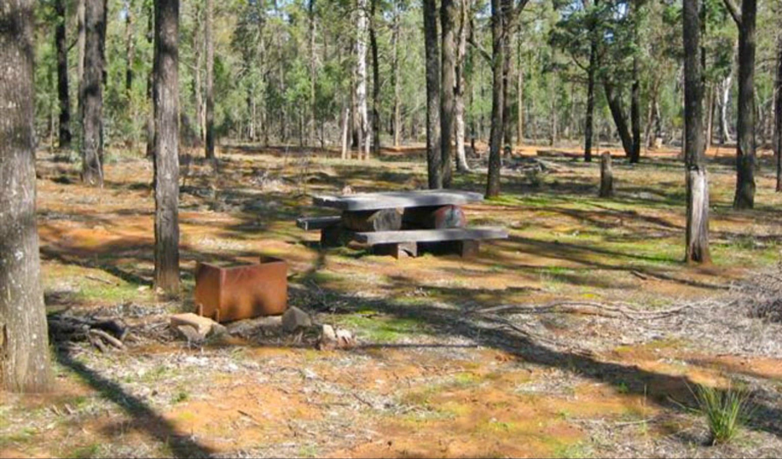 Two Dams picnic area - Tourism Cairns