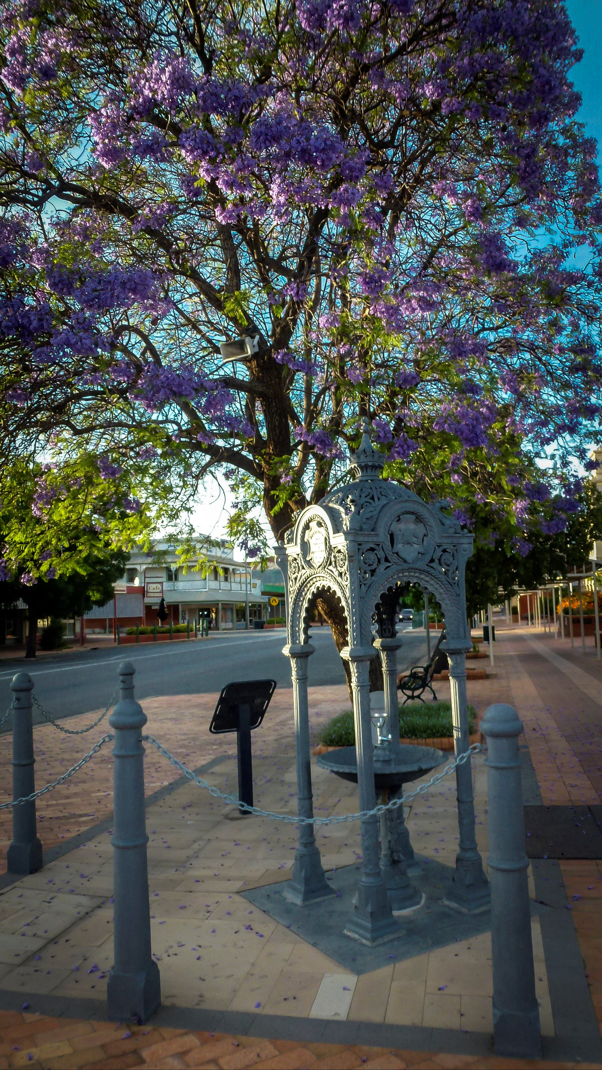 Witcombe Fountain - Tourism Cairns