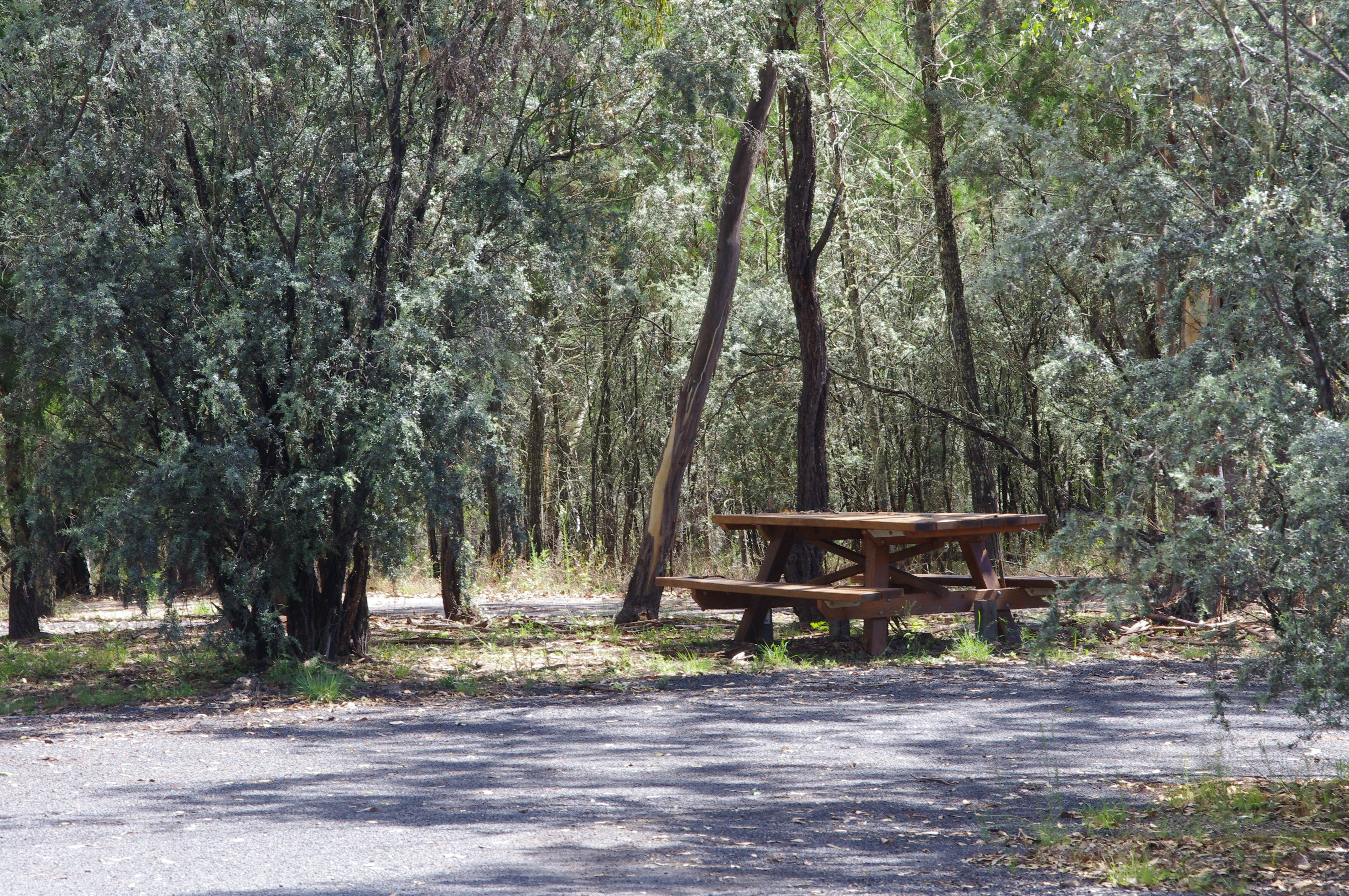 Goonoowigall State Conservation Area - Tourism Cairns