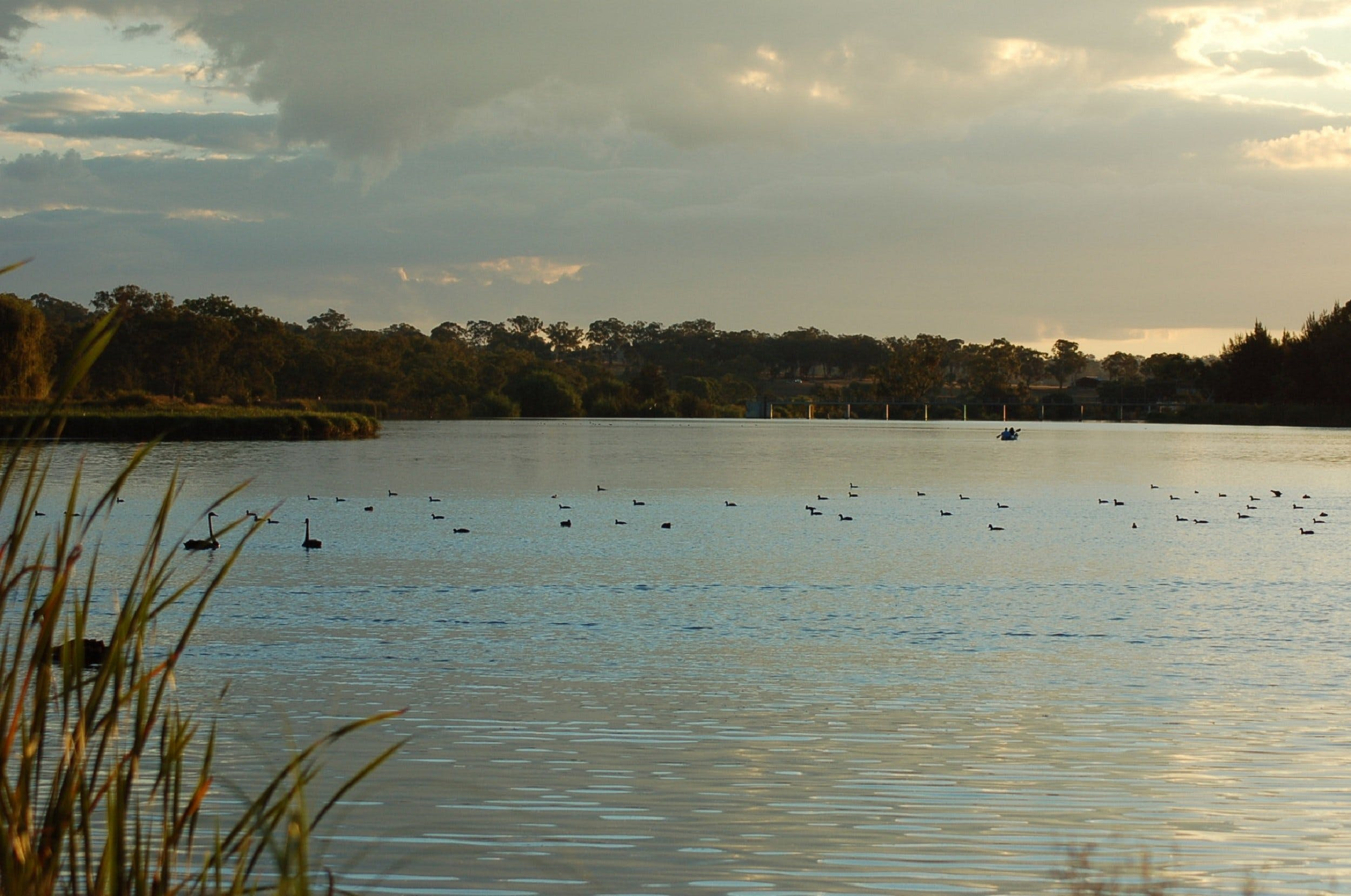 Lake Inverell Reserve - Tourism Cairns