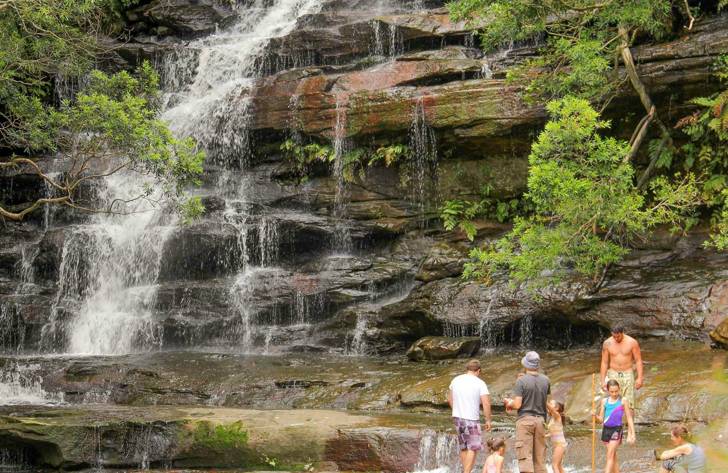 Somersby Falls Picnic Area - Tourism Cairns
