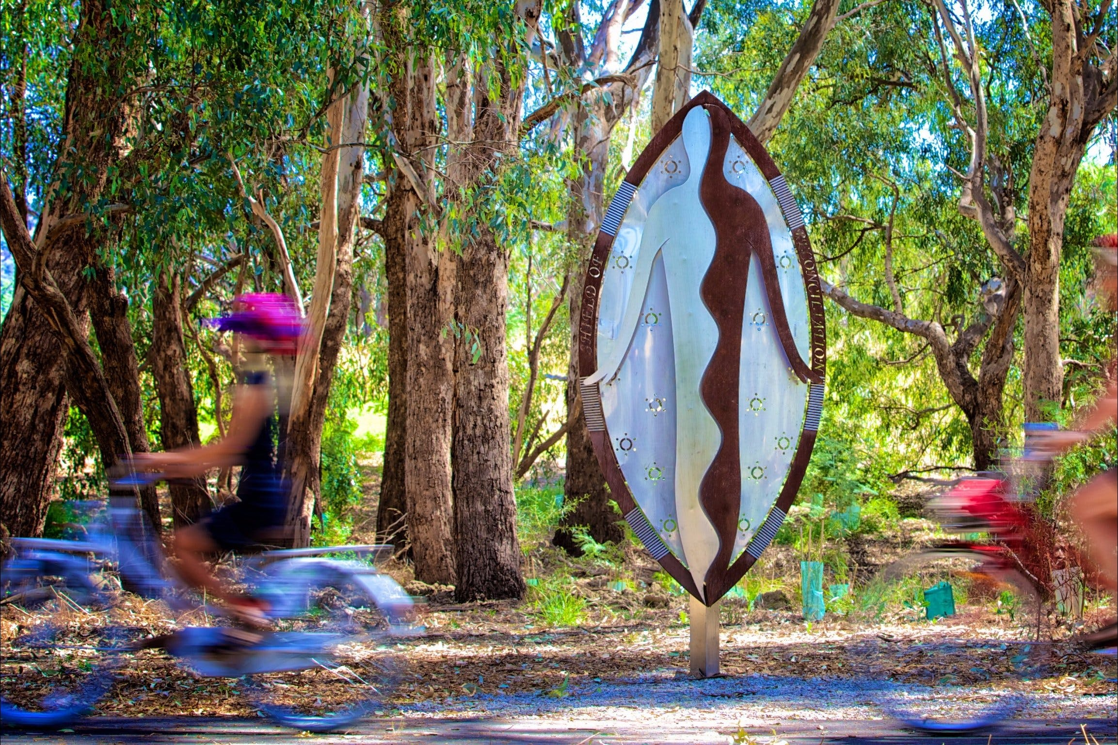 Wagirra Trail and Yindyamarra Sculpture Walk - Tourism Cairns