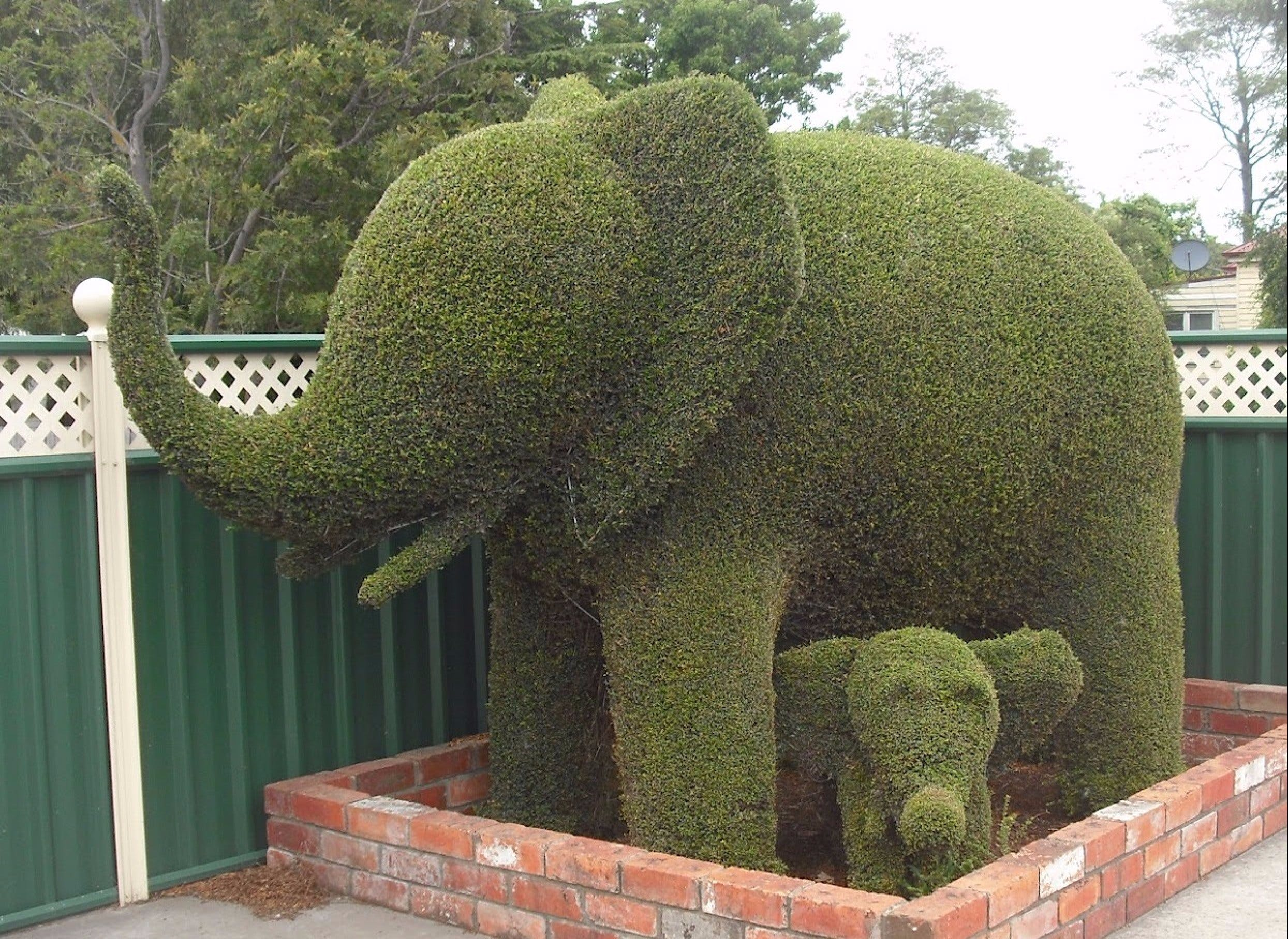 Railton Town of Topiary - Tourism Cairns