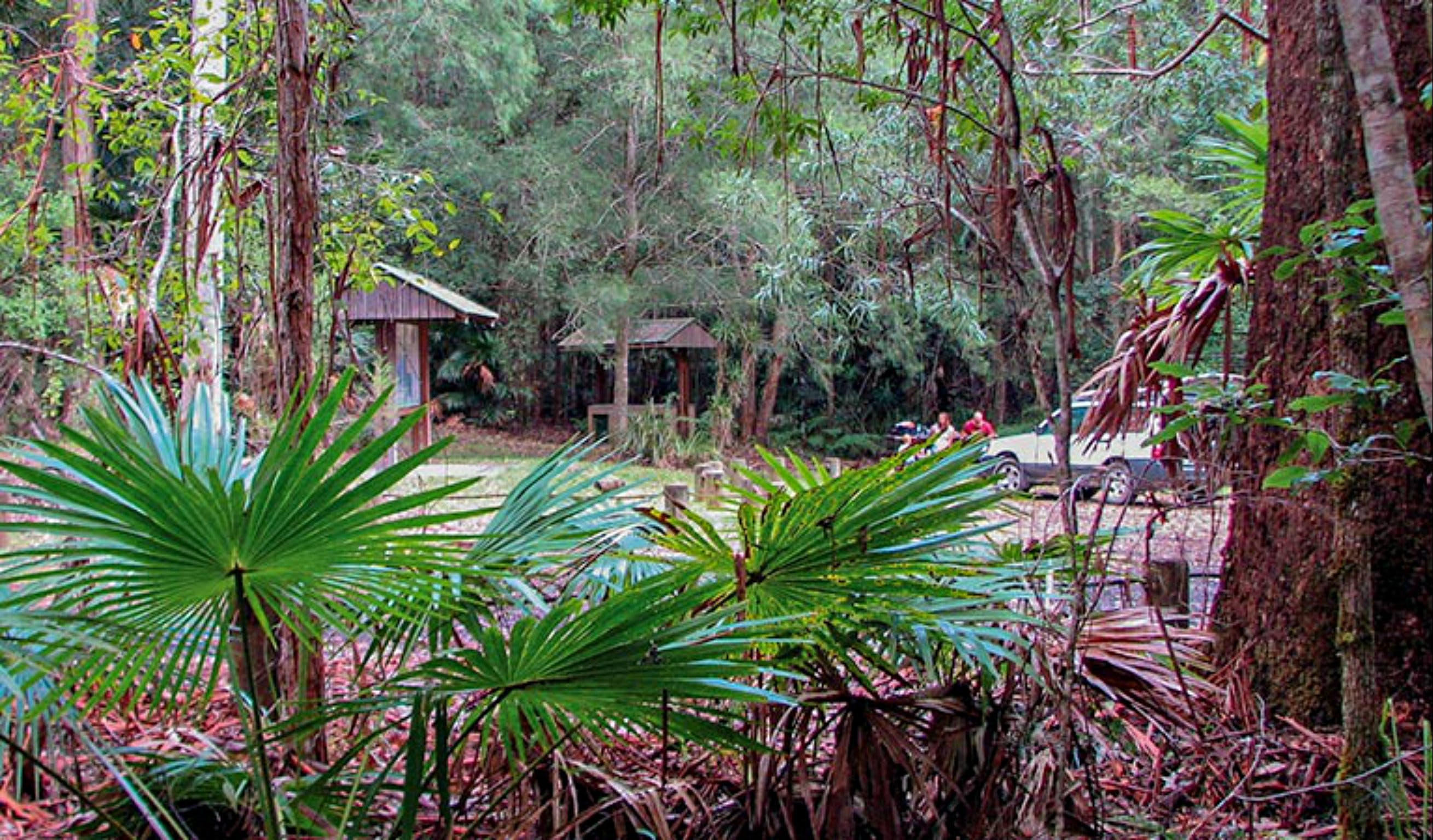 Sugar Creek Picnic Area - Tourism Cairns