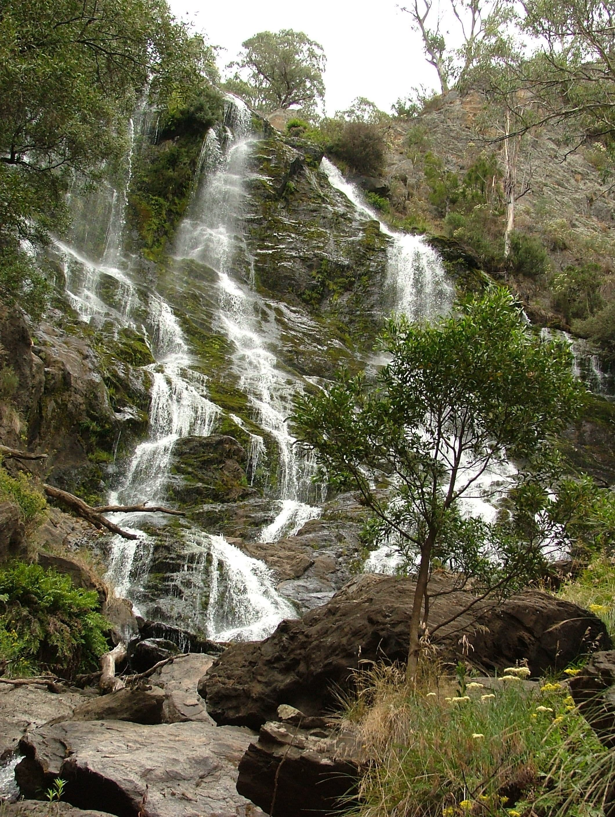 Buddong Falls Walking Track - Tourism Cairns